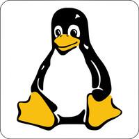Notebook-Sticker - Pinguin